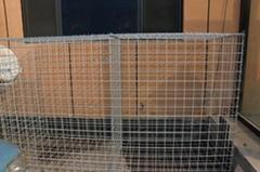 Anping Xinboyuan welded wire mesh gabion fence