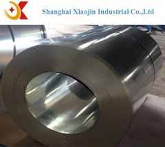Galvanized steel in coil for metal building material