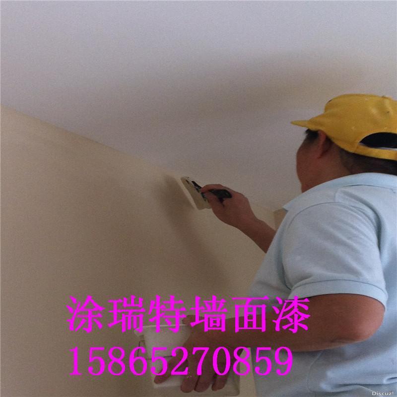 山東牆面漆 4