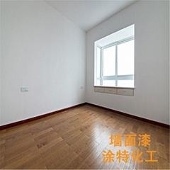 室内白色乳胶漆
