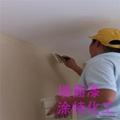 室內白色乳膠漆 3
