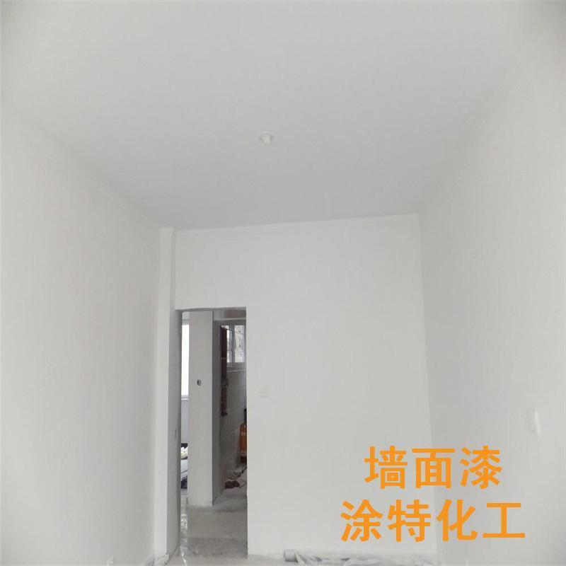 室內白色乳膠漆 4
