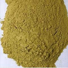 棉籽浓缩蛋白