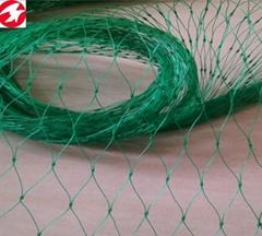 Garden anti bird netting green plastic netting for your fruit
