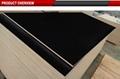 phenolic board plywood film faced plywood