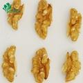 Grade A Dried Wholesale Light Quarter