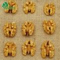 Wholesale Price Walnut Kernels Without