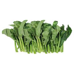 Good quality fresh kale accept custom planting all year round