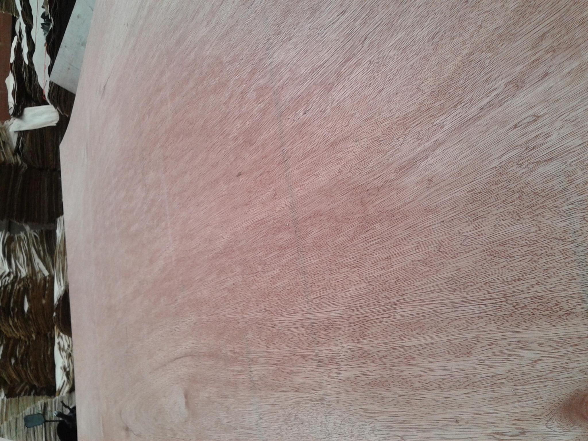 楊木貼面板 2