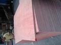 杨木贴面板 4