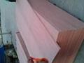 桉木膠合板 4