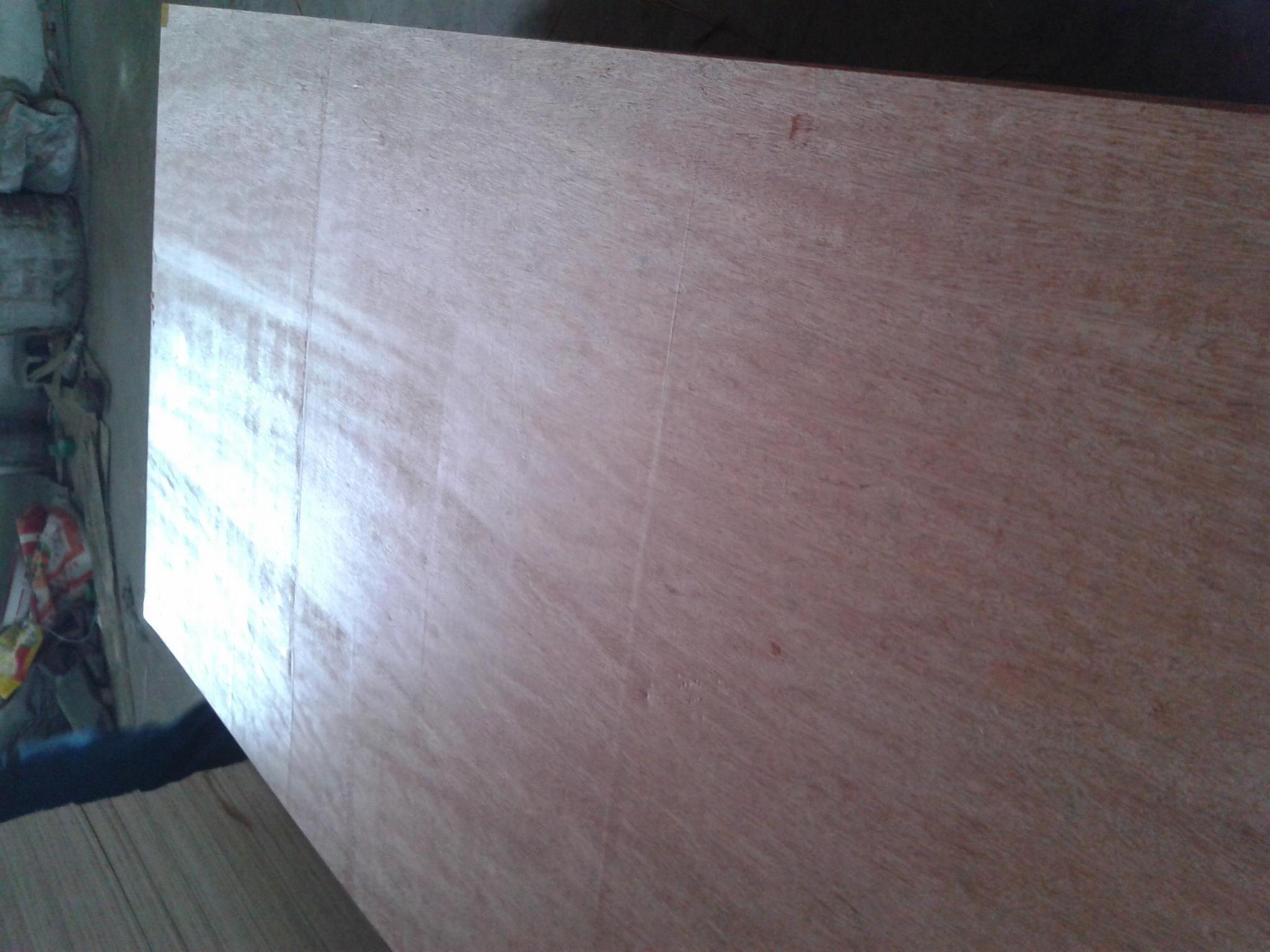 7厘桃花芯胶合板 2