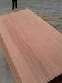 木基板三合板 4
