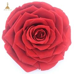 9-10cm Big Size Preserved Flower Rose for Decor Supplies