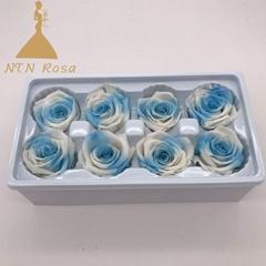 Rose Life-Sized for DIY Valentine's Day Anniversary Wedding Birthday Gift