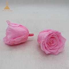 Eternity Flowers Instead