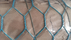 Galvanized hexagonal wire mesh netting