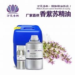 现货供应香紫苏精油  香紫苏 单方精油