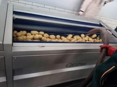 potato and carrot peeling machine