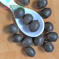 Black Iron Shell Lotus Seed Nut Kernel Lotus Extract