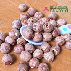 Red Lotus Seed Nut Kernel Lotus Extract