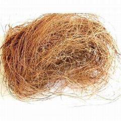 Long Coconut Fiber