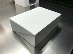 White Sample Display Box