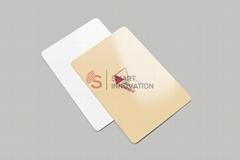 SALTO Paper RFID Hotel Key Card