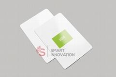 Onity Eco- Friendly RFID Hotel Key Card