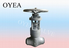Wcb Forged Steel Stainless Steel Power Station Globe Valve