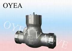 Cast Steel Forged Steel High Temperature High Pressure Power Station Check Valve