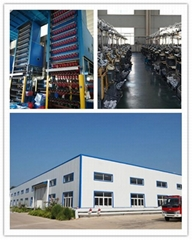 Shandong Xinli Industrial Co.,Ltd.
