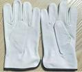 Goatskin Assembly Gloves Garden Gloves 5