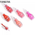 China Long-wearing greasy moisturizing lip gloss with brilliant tint supplier 4