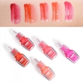 China Long-wearing greasy moisturizing lip gloss with brilliant tint supplier 5