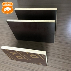 Black/Brown Film Faced Plywood Construction Formwork Shuttering Plywood with Pop