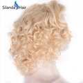 Remy Loose Wave Brazilian Human Hair #613 Lace Frontal Wigs 2