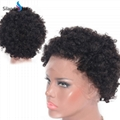 Afro Curly #1B Brazilian Remy Human Hair Full Lace Wigs 5