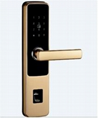 VIKA smart locks for home and hotel VKL8301