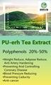 PU-erh Tea Extract