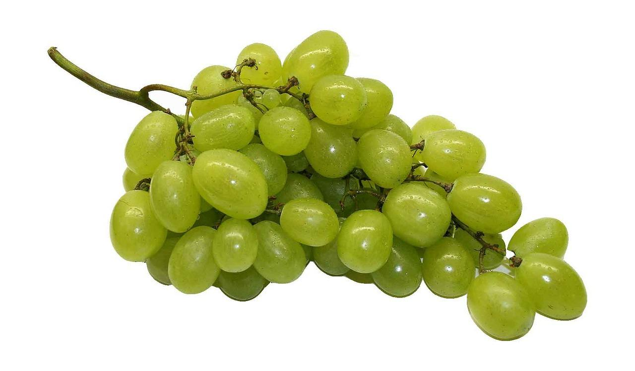 Fresh Grapes 2