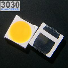 3030灯珠1W贴片LED光源户外灯具专用