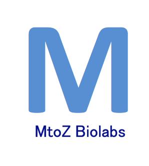 Fatty Acids metabolomics 1