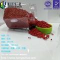 大紅色色母 高濃度血紅色母粒 高端紅色色母 吹膜吹瓶專用可定製 2