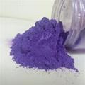 Cosmetic pearl powder, nail polish