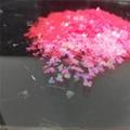 異型金蔥粉閃光片 2