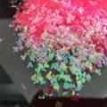 異型金蔥粉閃光片 6