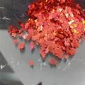 耐酸異型金蔥粉閃光片 3