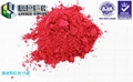 15 to 70 degrees thermochromic pigment Hand pinch color powder 13