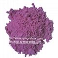 玩具注塑光變粉 塗料印刷光變粉 高亮感光變色粉 4